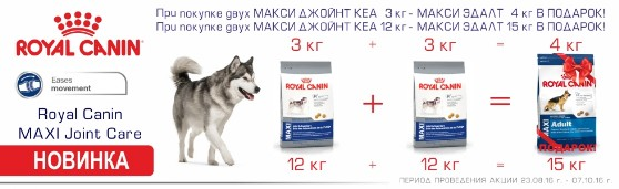 Акция на корм Royal Canin Maxi Joint Care!